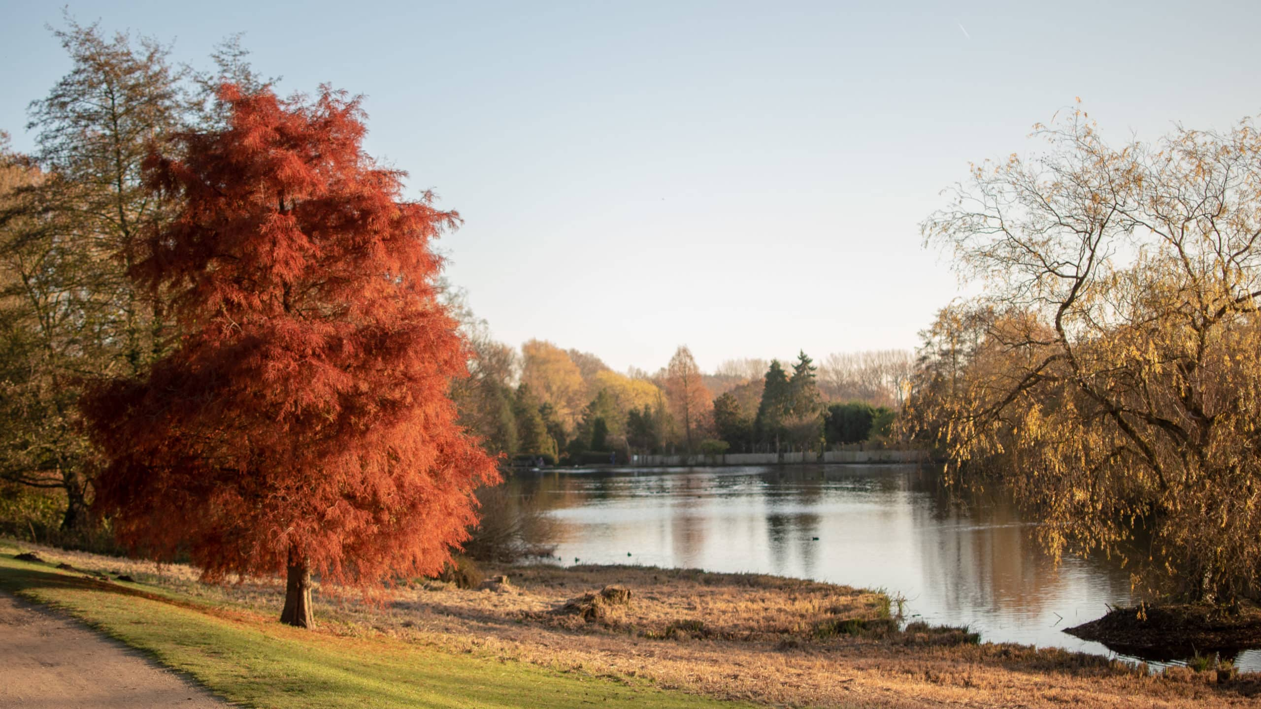 Newstead Abbey in the autumnal sunshine