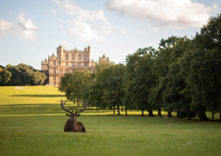 Wollaton Hall weddings | Wedding venue guide